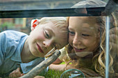 Caucasian brother and sister examining grasshopper