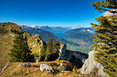 View from Oberberghorn at Lake Thun and Interlaken, Grindelwald, Bernese alps, Canton Berne, Switzerland