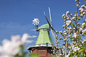 Holland windmill Venti Amica in Hollern-Twielenfleth, Altes Land, Lower Saxony, Northern Germany, Germany, Europe