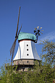 Windmill Amanda in Kappeln, Baltic coast, Schleswig-Holstein, Northern Germany, Germany, Europe