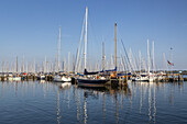 Harbour in Maasholmen by the Schlei, Baltic coast, Schleswig-Holstein, Northern Germany, Germany, Europe