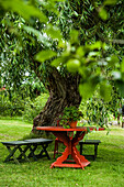 red wooden table under a willow tree in the garden of sweden´s most famous painter Carl Larsson, Sundborn, Falun, Dalarna, Sweden