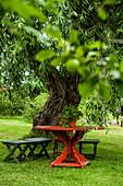 Roter Gartentisch unter einer Weide im Garten von Schwedens berühmtesten Maler Carl Larsson, Sundborn, bei Falun, Dalarna, Schweden