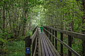 KInd läuft über eine Holzbrücke im Wald des Naturreservats am Vänernsee, Västergötland, Schweden