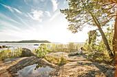 Kind liegt lesend auf einem Felsen in der Sonne am Rand des Vänernsees, Halland, Schweden