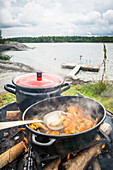 fresh collected chanterelles are roasted in a pan on a camp fire with bay and boat bridge behind, Anskarsklubb, Oregrund, Uppsala, Sweden