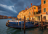 Overlooking the Grand Canal with gondolas in the morning sun and dramatic clouds, San Marco, Venice, Veneto, Italy