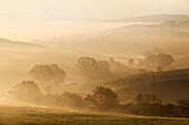 Morning sun over the hills and misty valleys of the Val d'Orcia, San Quirico d'Orcia, Siena Province, Tuscany, Italy