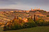 View over vineyards to San Gimignano at sunrise, Tuscany, Italy