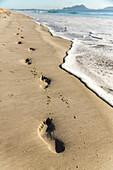barefeet, footprints in golden sand on beach, pristine beach, water, high format, sea foam, nobody, Waipu, North Island, New Zealand