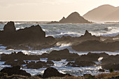 Owhiro Bay, south of Wellington, rough seas of Cook Strait, North Island, New Zealand