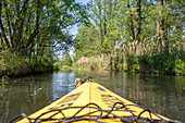 Kayak tour in Summer along the river Spree, Spreewald, Biosphere reserve, cultural landscape, Spree, Brandenburg, Germany