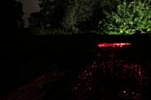 Nightshot of an illuminated mushroom at the waters edge, Spreewald, cultural landscape, long exposure, Brandenburg, Germany