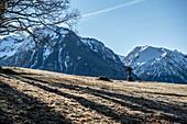Bergpanorama vom Aussichtspunkt, Nebelhorn, Rundweg, Wandern, Oberallgäu, Oberstdorf, Deutschland