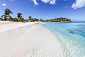 Palmen und weißer Sand umgeben das türkisfarbene Karibisches Meer, Ffryes Beach, Antigua, Antigua und Barbuda, Leeward Islands, Westindische Inseln, Karibik, Mittelamerika