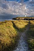 A coastal path leading to Twr Mawr lighthouse on Llanddwyn Island, Anglesey, Wales, United Kingdom, Europe