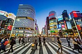 Japan, Tokyo City, Ginza Area, Night View, Chuo Avenue.