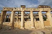 The latrines. Hierapolis. Ancient Greece. Asia Minor. Turkey