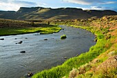 Malheur River at Riverside Recreation Site, Vale District Bureau of Land Management, Oregon.