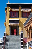 Thiksey Monastery, Indus Valley, Ladakh, India, Asia. Buddhist monk in front of temple entrance.