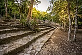 Structure in Coba (Quintana Roo, Mexico)