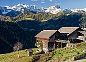 Wengen - La Valle, traditional mountain farms clustered in hamlets called Viles im Gader Valley - Val Badia in the Dolomites of South Tyrol - Alto Adige. The mountains of the nature Park Puez - Geisler - Odle in the background. europe, central europe, ita