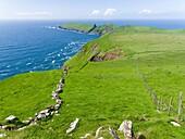 The island Mykines, part of the Faroe Islands in the North Atlantic. Europe, Northern Europe, Denmark, Faroe Islands.
