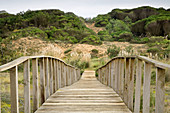 Wooden footbridge in sand dunes, Dunas de Liencres Natural Park, Cantabria, Spain