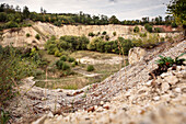 quarry at natural reserve Lindle, GEO park Noerdlinger Ries, greater Noerdlingen, Bavaria, Germany