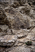 suevit rocks in the quarry of Altenbuerg, GEO park Noerdlinger Ries, greater Noerdlingen, Bavaria, Germany