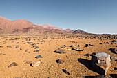 Rocky desert at the foot of the Brandberg mountain, Damaraland, Erongo, Namibia, Africa.