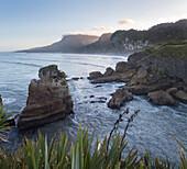 Steep coastline, Paparoa-National Park, West Coast,  South Island, Tasman Sea, New Zealand, Oceania