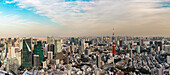 Tokyo Skyline seen from Roppongi Hills with Skytree, Tokyo Tower and Bay, Minato-ku, Tokyo, Japan