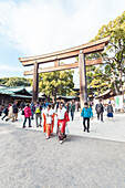 Two young Japanese women on Coming of Age day in front of Wooden Torii of Meiji Shrine, Shibuya, Tokyo, Japan