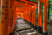Famous stone path with many red Torii at Fushimi Inari-Taisha in Kyoto, Japan