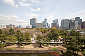 Der beste Ausblick im Higashi-Koen vom geheimen Aussichtspunkt am Honmaru Garten, Chiyoda-ku, Tokio, Japan