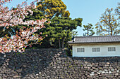 Building on the wall for defense on ground of Imperial Palace, Chiyoda-ku, Tokyo, Japan