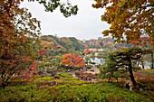 From viewpoint in Rikugien Garden in Autumn, Taito-ku, Tokyo, Japan