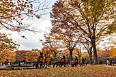 Japanese couples sitting on benches at Yoyogi Park in autumn, Shibuya, Tokyo, Japan