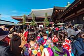 Young Japanese women wearing kimono in front of temple Senso-ji in Asakusa during new year, Taito-ku, Tokyo, Japan