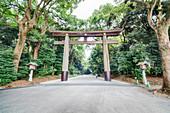 Ichi-no-Torii of Meiji Shrine, Shibuya, Tokyo, Japan