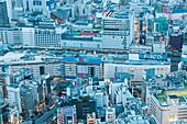 Department Stores around Ikebukuro Station seen from Sunshine City, Toshima-ku, Tokyo, Japan