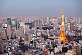 Tokyo Tower and Shimbashi seen from above at blue hour, Minato-ku, Tokyo, Japan