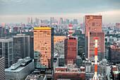 City view towards Shinjuku from Mandarin Oriental, Nihonbashi, Chuo-ku, Tokyo, Japan