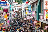 Crowd during weekend in Takeshita Dori Harajuku, Shibuya-ku, Tokyo, Japan