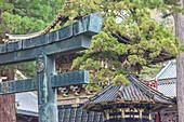 Detailed close-up of Torii at Toshogu-Shrine, Nikko, Tochigi Prefecture, Japan
