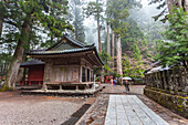 Woman with umbrella at Futurasan Shrine in Nikko, Tochigi Prefecture, Japan