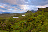 Sunset, Tree, View, Ilse of Skye, Quiraing, Highlands, Scotland