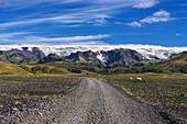 Road, Sheep, Wilderness, Myrdals Glacier, Mountains, Porsmoerk, Iceland, Europe