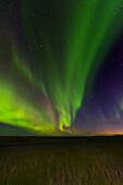 Aurora Borealis, Northern Lights, At Night, Sky, Stars, Iceland, Europe